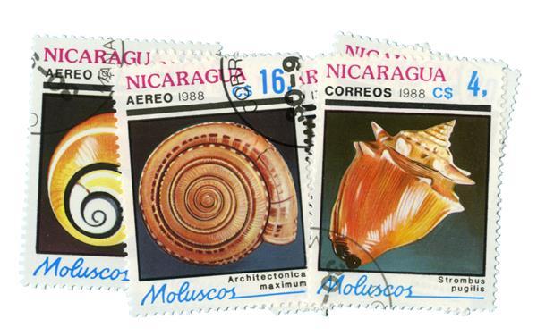 1988 Nicaragua