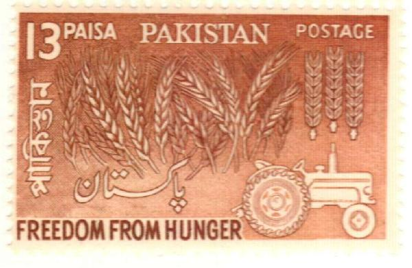 1963 Pakistan