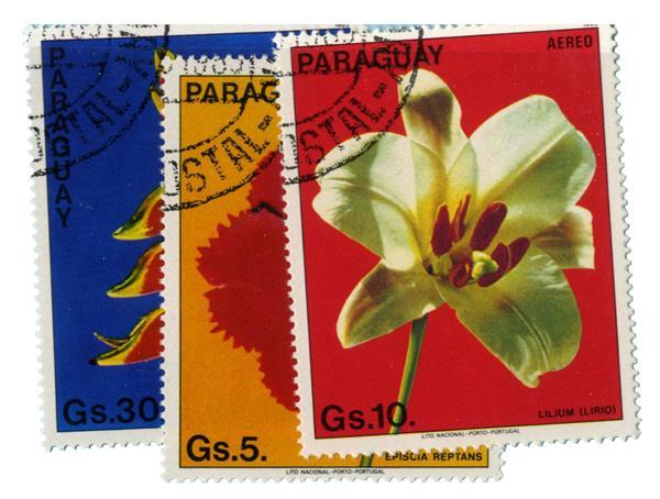 1983 Paraguay