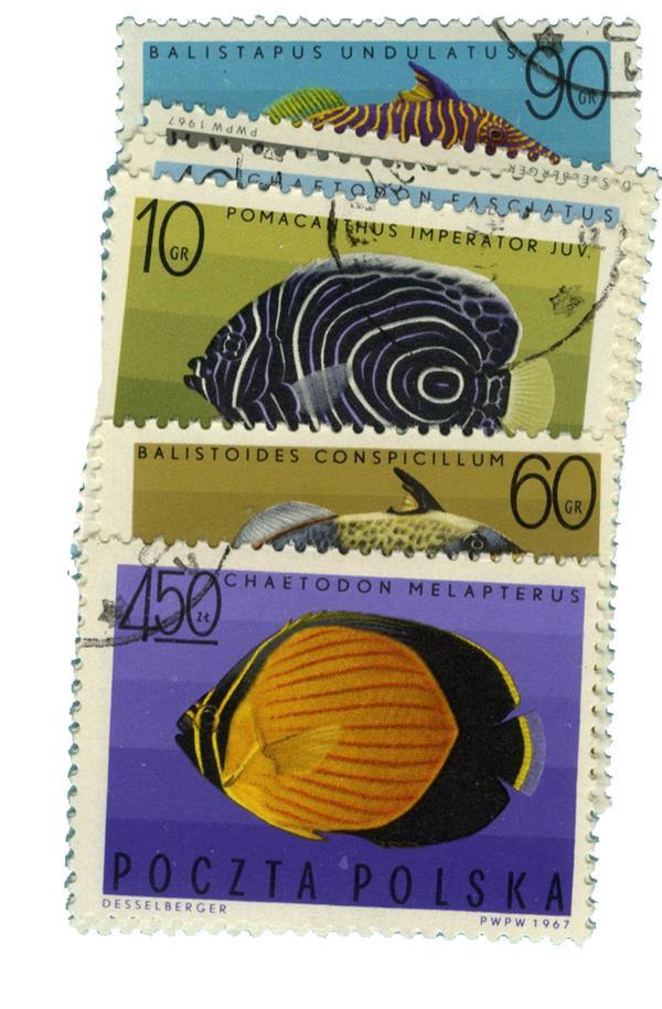 1967 Poland