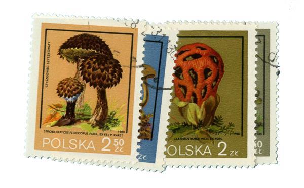 1980 Poland