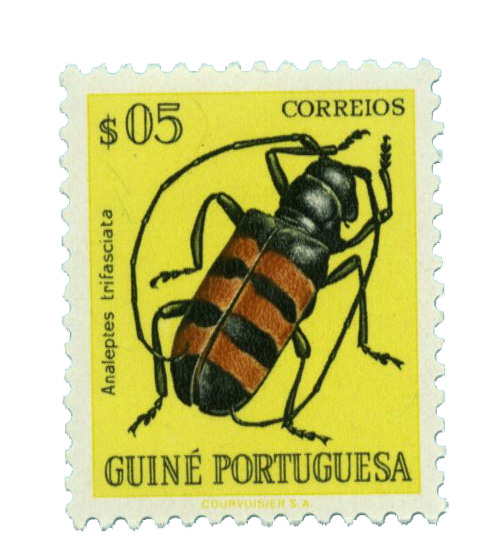 1953 Portuguese Guinea
