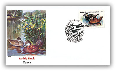 1991 USSR Duck 20K Ruddy Duck Cover