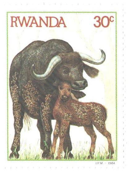 1984 Rwanda