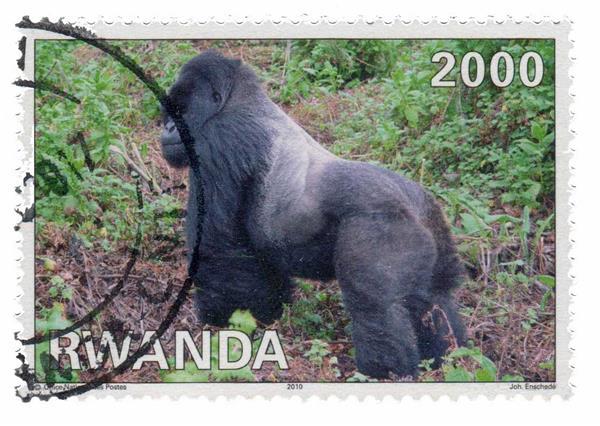 2010 Rwanda