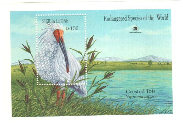 1989 Sierra Leone