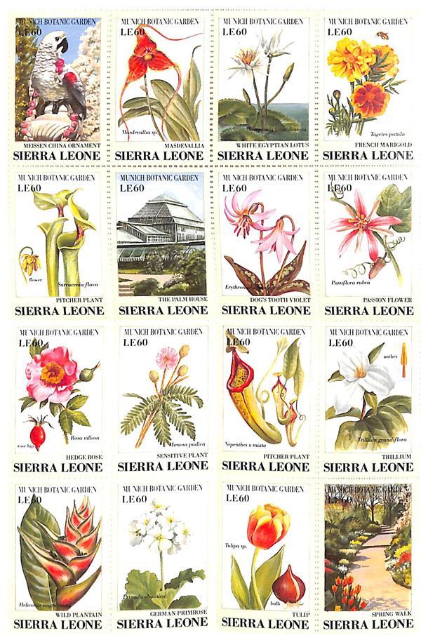 1991 Sierra Leone