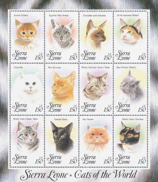 1993 150le Domesticated Cats
