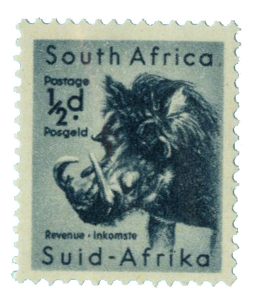 1954 South Africa