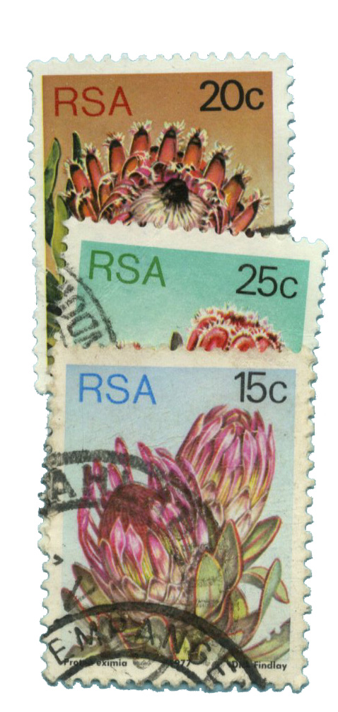 1977 South Africa