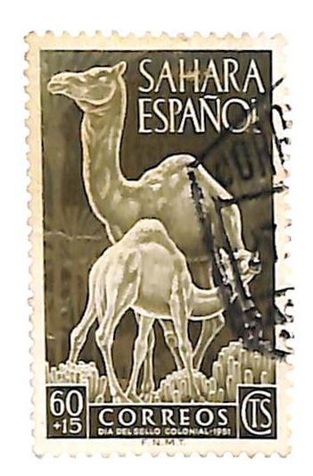 1951 Spanish Sahara