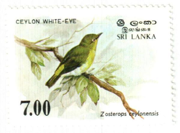 1988 Sri Lanka