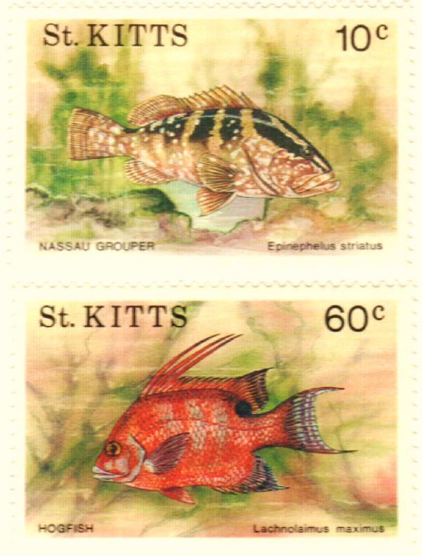1991 St. Kitts