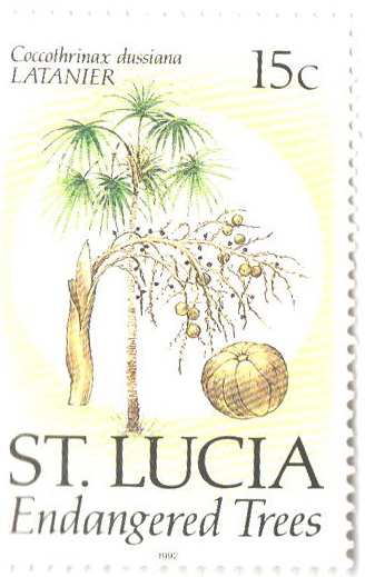 1992 St. Lucia