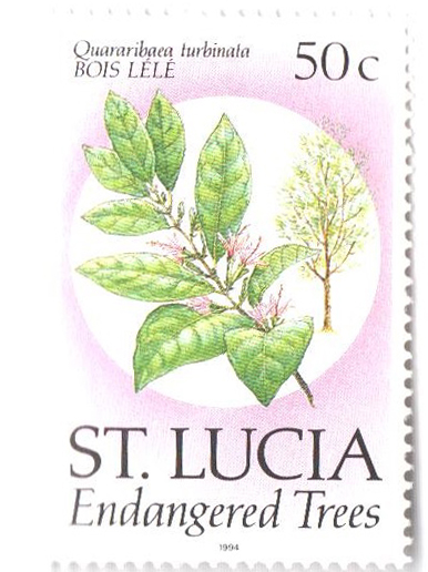 1994 St. Lucia