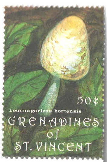 1992 St. Vincent Grenadines