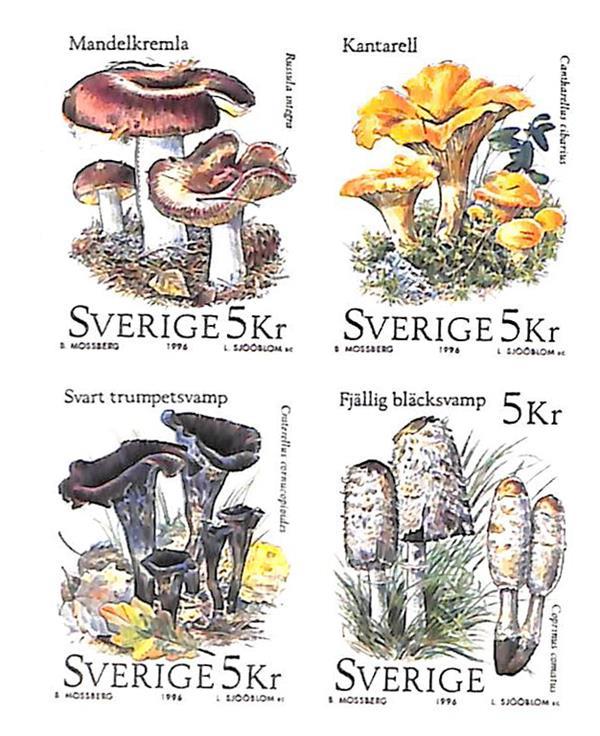 1996 Sweden