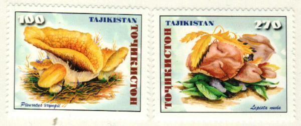 1999 Tajikistan