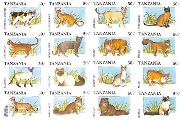 1991 Tanzania