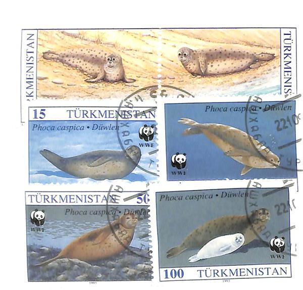1993 Turkmenistan