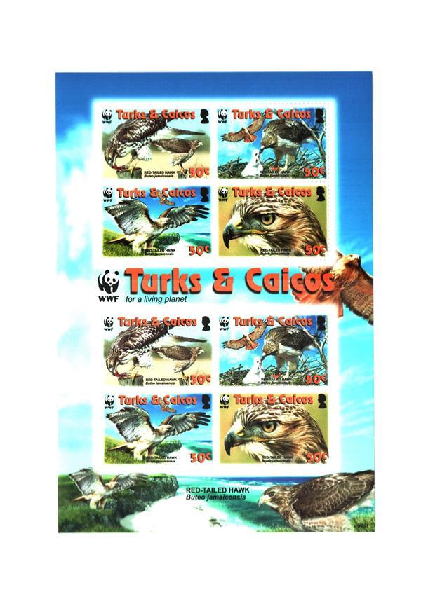 2007 Turks & Caicos Islands