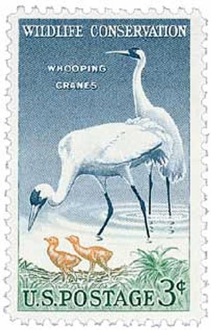 1957 3¢ Whooping Cranes