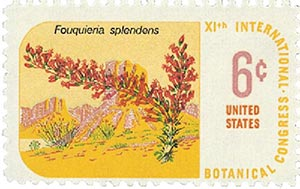 1969 6c Botanical Congress: Ocotillo