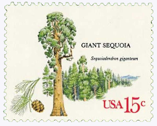 1978 15c American Trees: Giant Sequoia