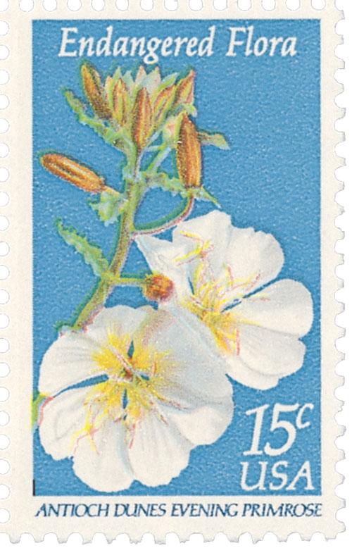 1979 15c Endangered Flora: Evening Primrose