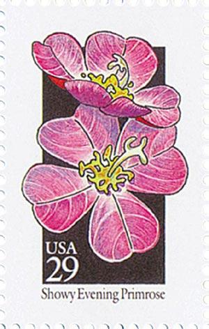 1992 29c Wildflowers: Showy Evening Primrose