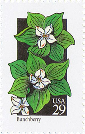 1992 29c Wildflowers: Bunchberry
