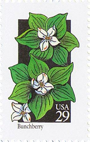 1992 29c Wildflowers: Bunchberry