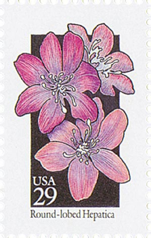 1992 29c Wildflowers: Round-lobed Hepatica