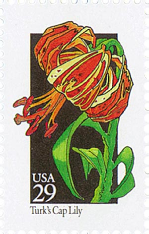 1992 29c Wildflowers: Turks Cap Lily