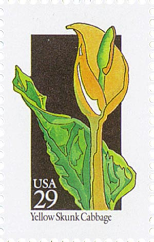 1992 29c Wildflowers: Yellow Skunk Cabbage