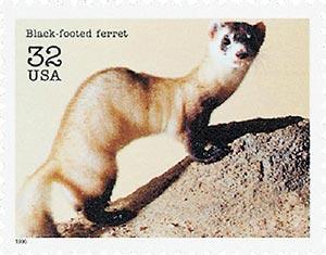 1996 32c Endangered Species: Black-footed Ferret