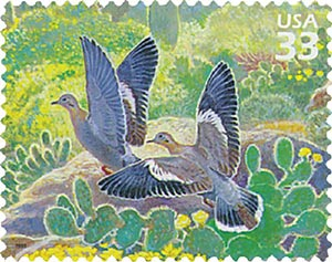 1999 33c Sonoran Desert: White-winged Dove