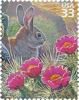 1999 33c Sonoran Desert: Dessert Cottontail