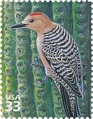 1999 33c Sonoran Desert: Gila Woodpecker