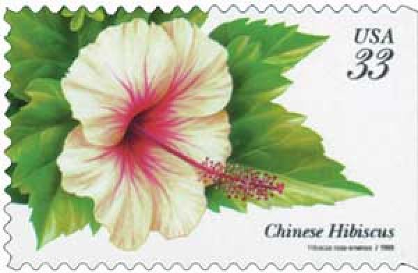 1999 33c Tropical Flowers: Chinese Hibiscus