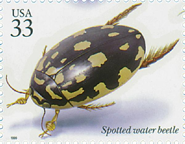 1999 33c Insects and Spiders: Spotted Water Beetle