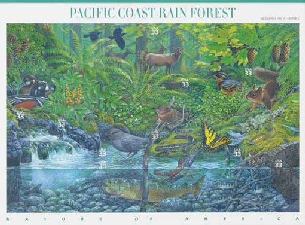 2000 33c Nature of America: Pacific Coast Rain Forest