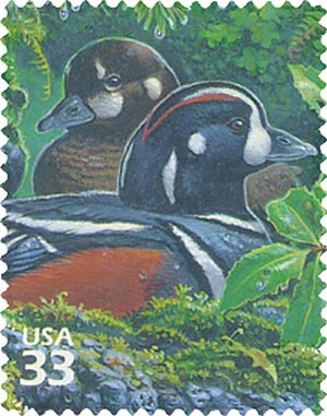 2000 33c Pacific Coast Rain Forest: Harlequin Duck