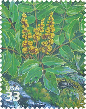 2000 33c Pacific Coast Rain Forest: Dwarf Oregon-grape