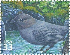 2000 33c Pacific Coast Rain Forest: American Dipper