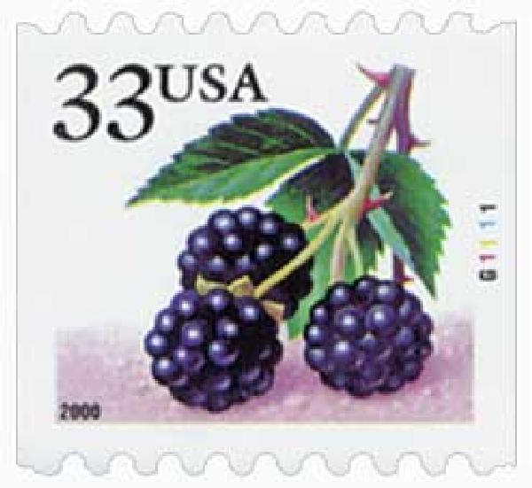 2000 33c Blackberries, s/a