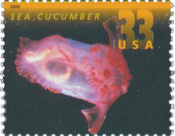 2000 33c Deep Sea Creatures: Sea Cucumber