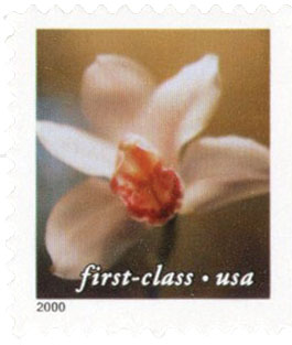 2000 34c Lilies: Cymbidium Orchid, 11.5 x 11.75 perf, booklet single
