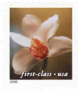 2000 34c Cymbidium Orchid non-denom bklt