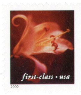 2000 34c Lilies: Asian Hybrid, 11.5 x 11.75 perf, booklet single